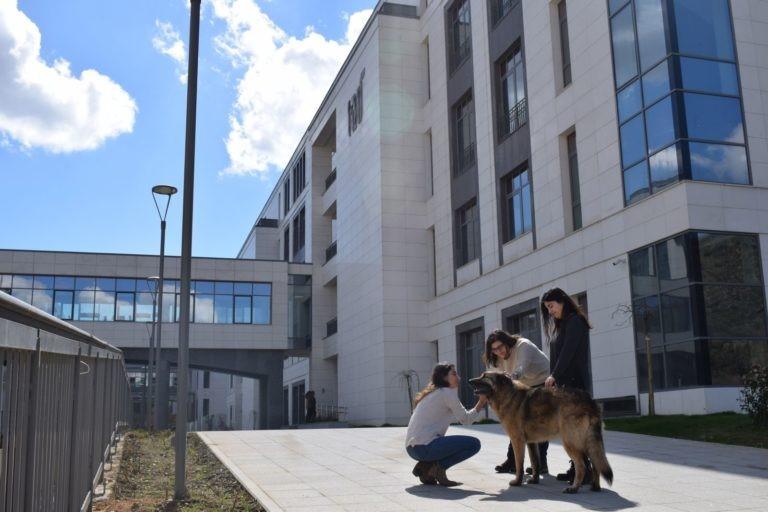 Türk Alman Üniversitesi öğrenciler